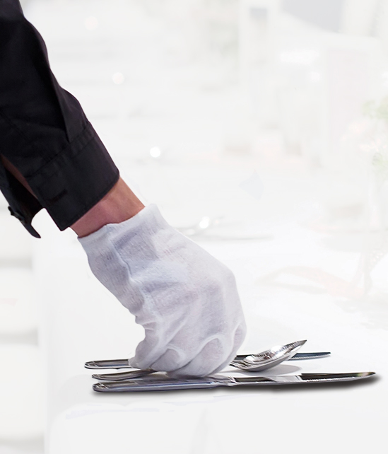 Silver Cleaning Gloves