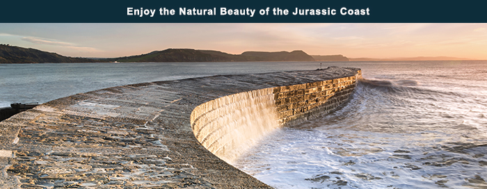 Enjoy the Natural Beauty of the Jurassic Coast